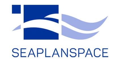 logotyp projektu seaplanspace
